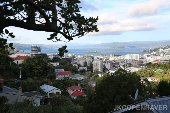 Favorite Cities in NewZealand